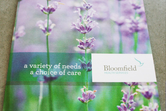 Bloomfield report cover